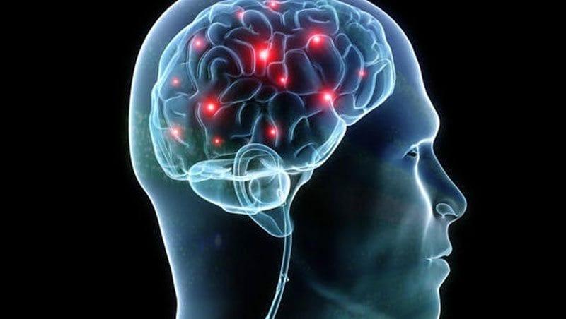 brain graphic 800 px live let live